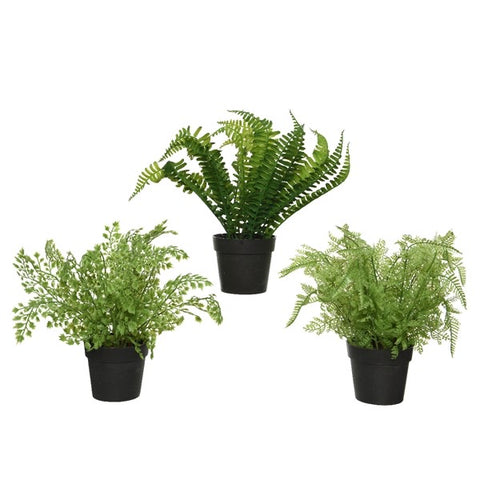 Artificial Fern in Pot