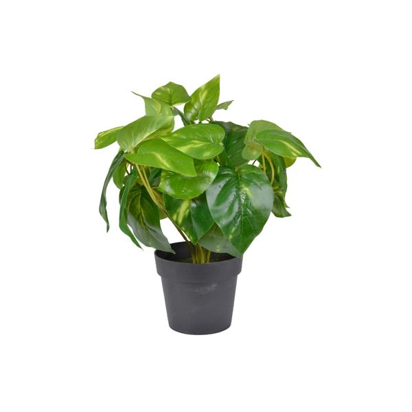 Artificial Ivy Plant in Pot