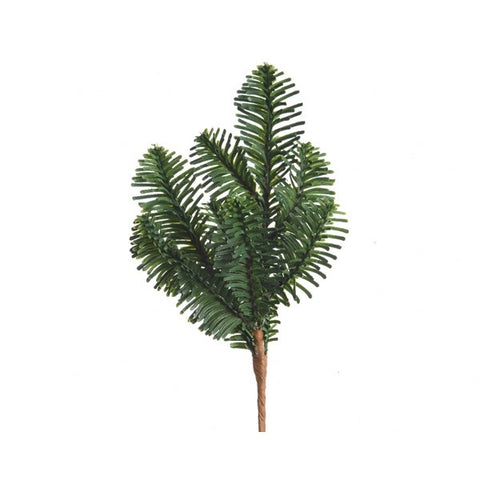 Green Nordmann Pine Branch