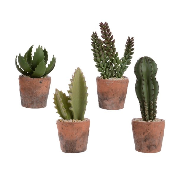 Artificial Cactus in Terracotta Pot