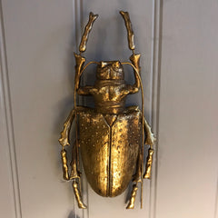 Large Gold Beetle with Antennas Wall Decor