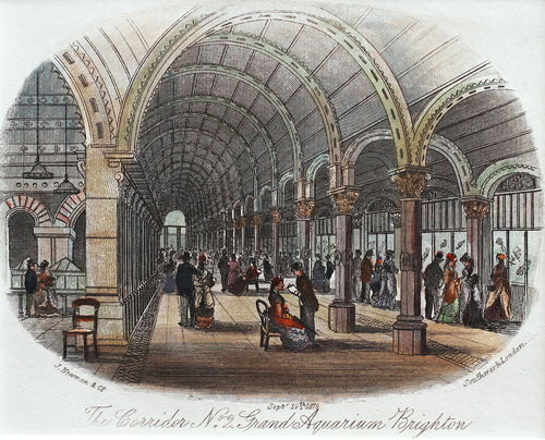 The Corridor No. 2 Grand Aquarium Brighton - Antique Steel Engraving 1876