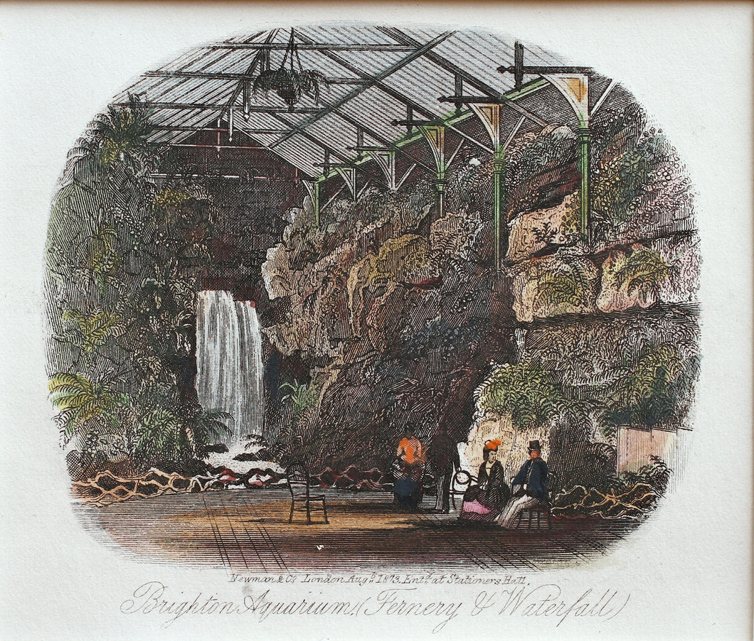 Fernery and Waterfall Grand Aquarium Brighton - Antique Steel Engraving 1873