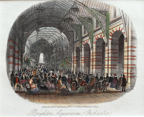 Brighton Aquarium Orchestra - Antique Steel Engraving 1873