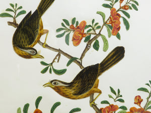 Chinese Rice Paper Painting of Exotic Birds and Flowers - circa 1870s