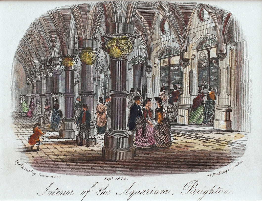 Interior of the Grand Aquarium Brighton - Antique Steel Engraving 1872