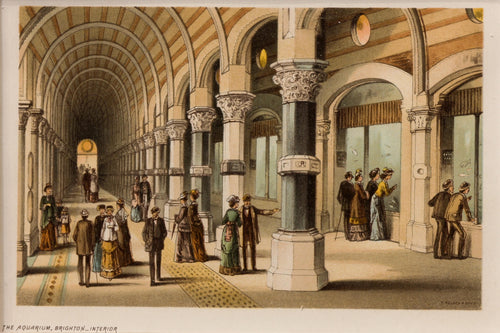 The Aquarium Brighton Interior - Antique Chromolithograph circa 1880