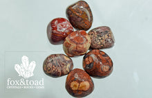 Bird's Eye Rhyolite Tumbled Stones
