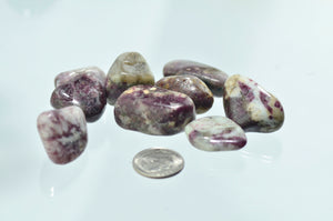 Tourmaline, Pink in Quartz Tumbled Stones