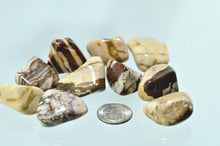 Jasper, Zebra (Brown) Tumbled Stones