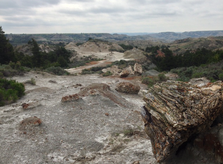 Theodore Roosevelt National Park: A Desolate, Grim Beauty