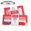 Winsor & Newton Oil Paint Set