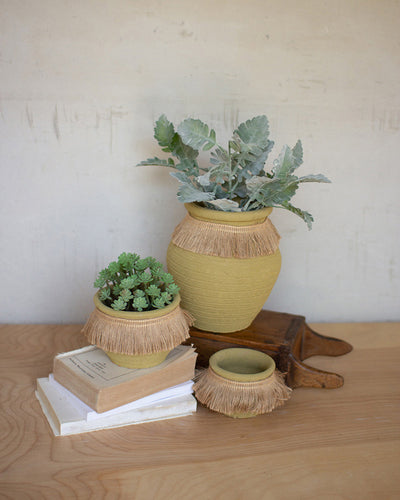Citron Sunshine Clay Pots