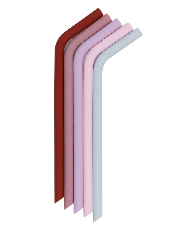 Reusable Bendie Straws - Earth & Blooms