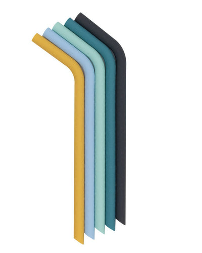 Reusable Bendie Straws - Sun & Sky