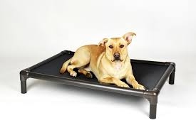 Kuranda Dog Cots