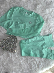Mint Ice Top and Tight Set