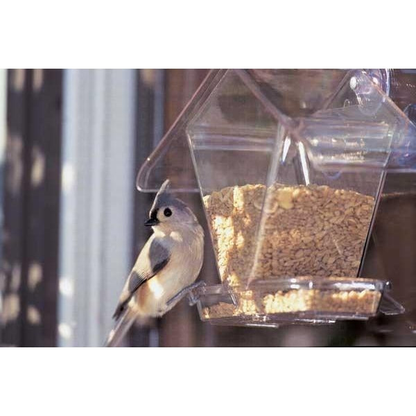 Window Cafe Hopper Feeder - lovethebirds