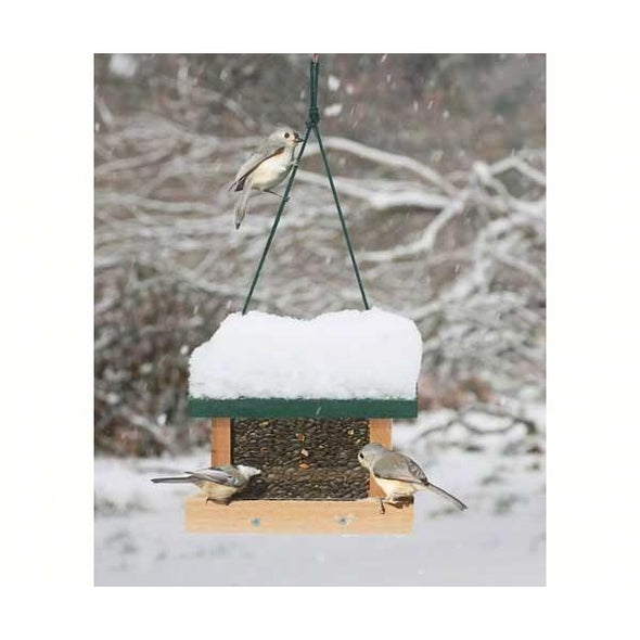 Little Looker Bird Feeder-lovethebirds