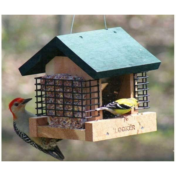 Suet and Seed Feeder Combo - lovethebirds
