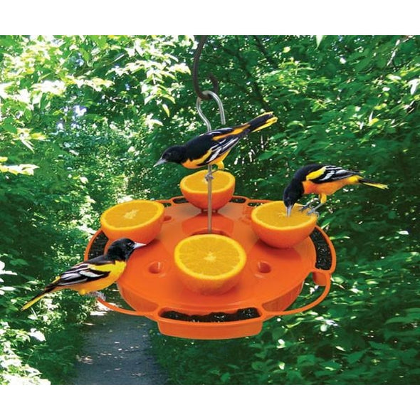 Ultimate Oriole Feeder - lovethebirds