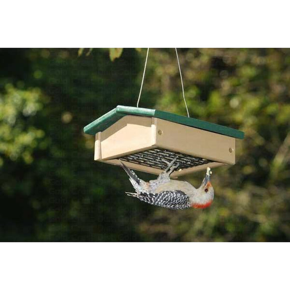 Upside Down Suet Feeder - lovethebirds