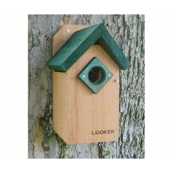 Bluebird House - lovethebirds