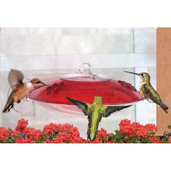 Window Hummingbird Feeder-lovethebirds