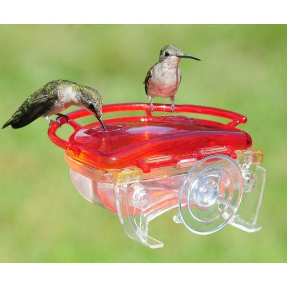 The Gem Window Hummingbird Feeder-lovethebirds