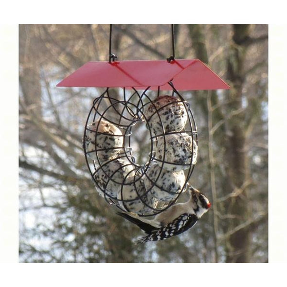 Suet Ball Feeder-lovethebirds