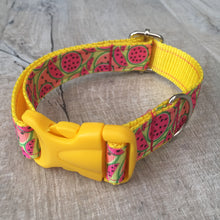 Dog Collar - Melons with Yellow Plastic Buckle - Size Medium