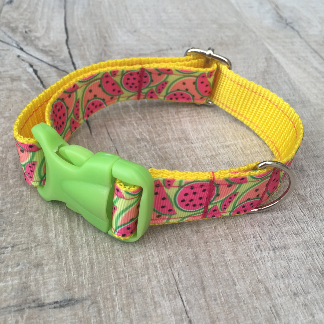Dog Collar - Melons with Lime Plastic Buckle - Size Medium