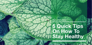 5 Quick Tips On How To Stay Healthy