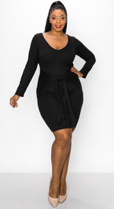 Sasha Plus Size Mini Dress