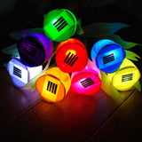 Solar Powered LED Flower Garden Light, Outdoor, WantYouNeed, WantYouNeed