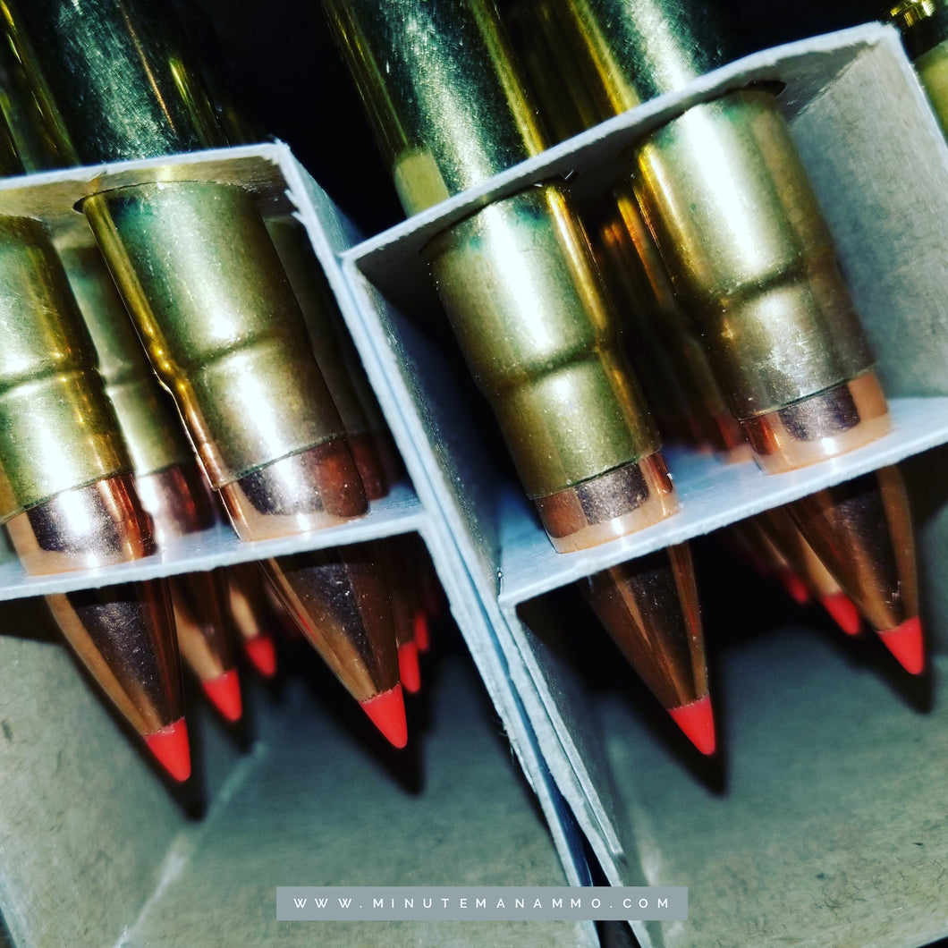 300 Blackout 110 grain Hornady V-MAX @ 2,400 fps. 20 rounds.