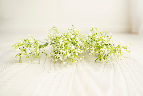 Baby's Breath Decoration