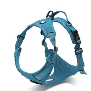 Nylon Large Pet Dog Harness All Weather (Blue) - Go Pugs