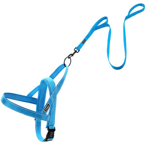 No Pull Reflective Dog Harness Leash Set For Small Medium Large Dogs XXS-L - Go Pugs