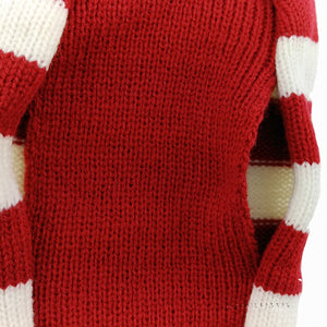 Christmas Reindeer Stripe Sweater(2 colors)(XS-L) - Go Pugs