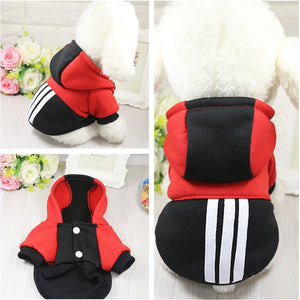 Sporty Hoodie For Your Playful Pal (XS-XL) (4 Colors) - Go Pugs