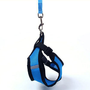 New Soft Breathable Air Nylon Mesh Puppy Dog Harness and Leash Set - Go Pugs