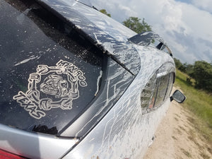 Texas Chapter Decal
