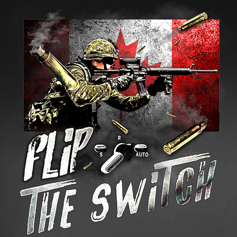Flip The Switch C7 Window Decal
