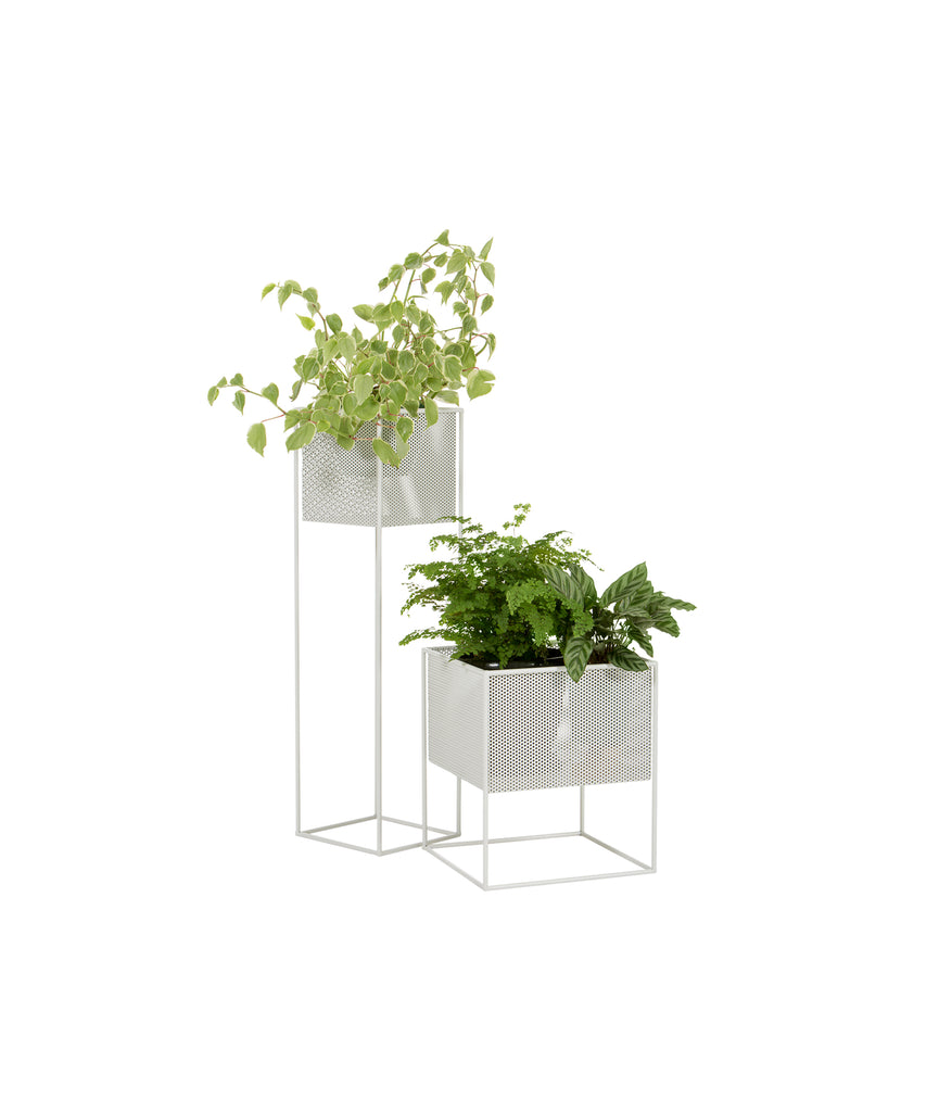 PLANTER SHORT (Indoor/Outdoor) - Redfox And Wilcox