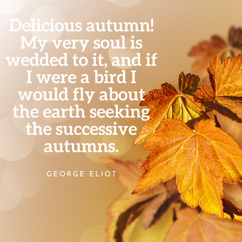 fall quote 4