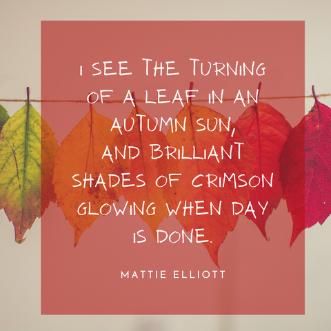 fall quote 7