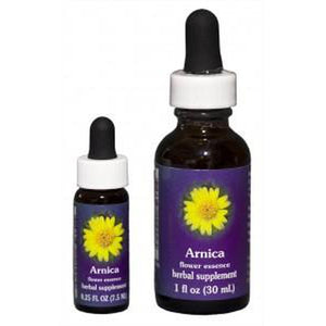 Arnica Flower Essence (dram)