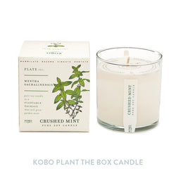 Kobo Plant-the-box Candle