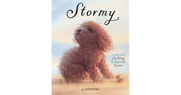 Stormy (Hardcover)